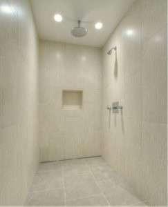Bathroom Shower Dual Head