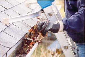 gutter cleaning, fall, leaves, home improvement