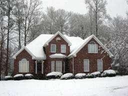 Moss Home Services Blog