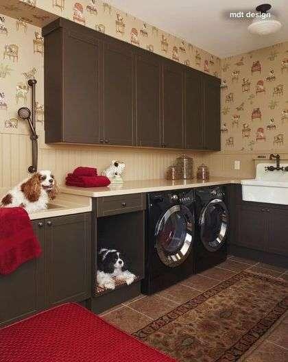 Laundry room with dog washing station