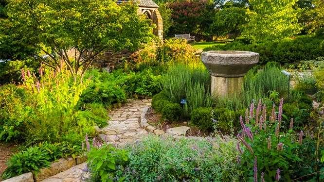 diy-garden